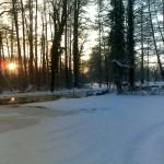 Spree zur Winterzeit Schlittschuhzeit